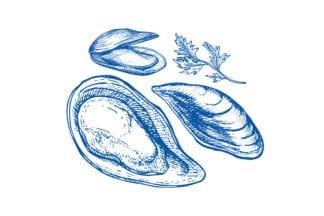 Huîtres et coquillages